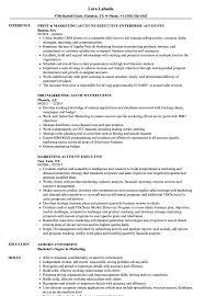 account executive resume marketing account executive resume sles velvet