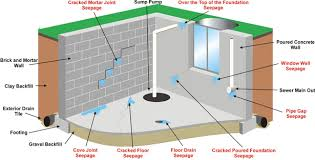 types of basement costly assumptions about water damage that are easily avoidable