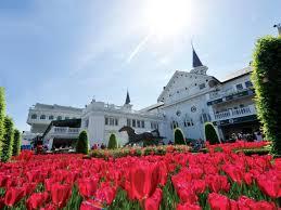 Kentucky Derby Flowers - run for the roses kentucky derby blooms diy network blog made