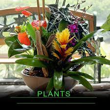 florist columbus ohio oberer s flowers your columbus florist since 1922