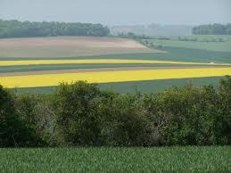 chambre d agriculture tours retour des premiers tours de plaine avec la chambre d agriculture de