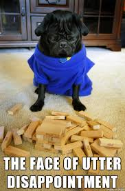 Funny Pug Memes - pug archives page 12 of 18 pug meme funny cute pugs