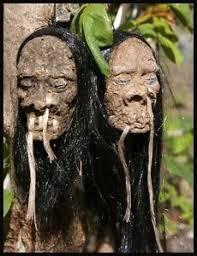 haired shrunken mirror ornaments