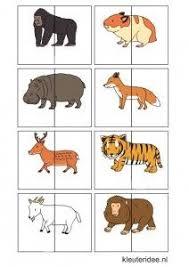 printable animal activities dierenspel voor kleuters kleuteridee nl animal match for