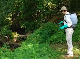 swds aquatic pesticides