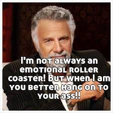 Roller Coaster Meme - i m not always an emotional roller coaster but when i am you