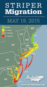 Jersey Shore Map Striper Migration Map May 19 2015 On The Water