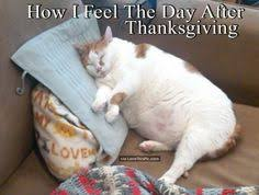 how i feel after thanksgiving happy thanksgiving october 12