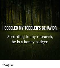 Meme Honey Badger - i googled my toddler s behavior according to my research he is a