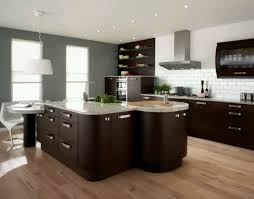 cabinet praiseworthy kitchen cabinet design home depot cute