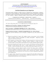 Business Development Resume Samples by Salesforce Developer Resume Samples Free Sample Resumes