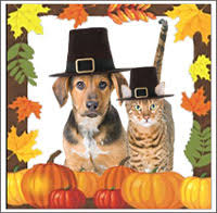thanksgiving pet tips adoptapet