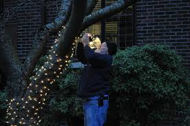 why do we put up lights at christmas file crista putting up christmas lights 01 jpg wikimedia commons
