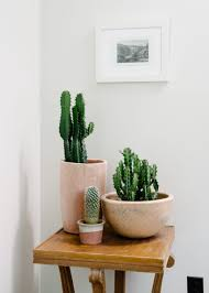 Wall Plant Holders Plant Stand Wonderful Indoor Plant Holders Pictures Concept