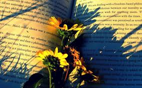 wallpaper books flowers paper shadow hd picture image