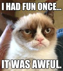 Grumpy Cat Meme I Had Fun Once - this is my favorite cat meme i had fun once it was awful mad