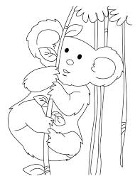 koala energy coloring pages download free koala