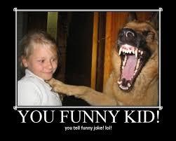 Big Teeth Meme - child my what big teeth you have gramma dog jokes on you i m not