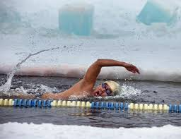 Michigan Wild Swimming images Brave swimmers take icy dip at outdoor winter championships the jpg