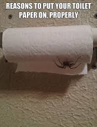 Shower Spider Meme - why you should respect the toilet paper rule humor hilarious and