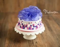 smashing cakes ººº one year birthday portrait photography cake