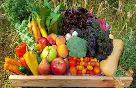 fruit delivery nyc fruit veggie baskets rustic roots organic home delivery