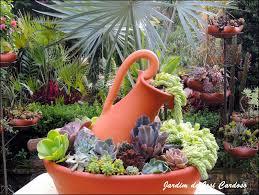 189 best containing succulents images on pinterest plants