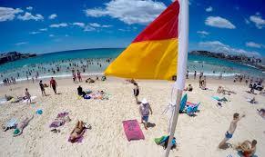 bondi beach suburb profile u0026 property market trends