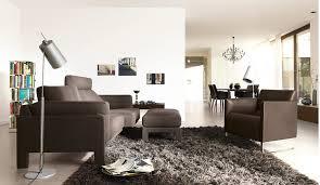 Modern Rugs For Living Room Living Room Rugs Modern Mesmerizing Ideas Interesting Modern Area