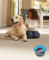 Pet Resistant Rugs Pet Friendly Carpet Best Carpet For Pets U0026 Pet Owners Mohawk