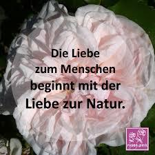 natur sprüche wir lieben www pink natur sprüche weise zitate