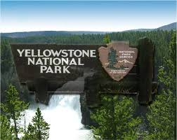 dangerous waters at yellowstone national park kulr8 news