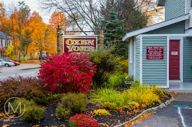 tips for shooting autumn foliage mersad donko photography