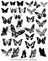 butterflies vector ado butterfly and