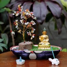 mybageecha india u0027s 1 online garden store