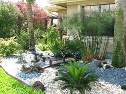 Rock Garden Florida Best Plants For Florida Garden Flowering Plants Florida Gardens