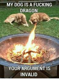 Your Argument Is Invalid Meme - my dog is a fucking dragon your argument is invalid fucking meme