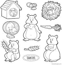 Coloriage à imprimer des hamsters  Lulu la taupe jeux gratuits