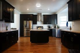Hanging Kitchen Cabinets Hanging Artwork From Ceiling Kitchen Traditional With Glass Front