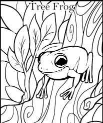 frog color pages free printable kiddo shelter