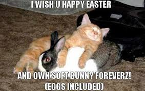 Easter Funny Memes - 52 funny easter memes that will make your holiday