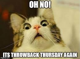 Throwback Thursday Meme - scared cat meme imgflip