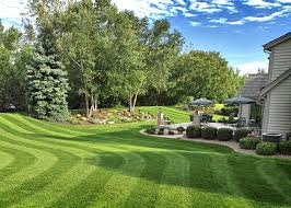 lawn care services pittsburgh pa professional lawn maintenance