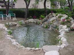 Pond In Backyard by Best 25 Fish Pond Pumps Ideas On Pinterest Koi Ponds Diy