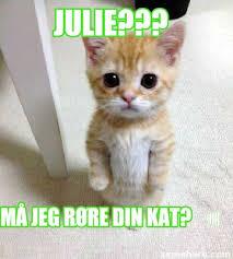 Kat Meme - meme creator julie må jeg røre din kat meme generator at