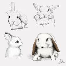cute anime bunny drawing painting and drawing inspiration