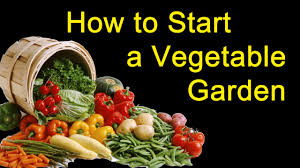 Starting An Organic Vegetable Garden by How To Make A Garden Organic Growing Plants Youtube