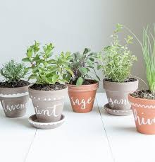 Indoor Herb Garden Ideas by 10 Tiny Herb Garden Ideas That Will Fit In Any Apartment Herbs