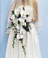 Send Flowers San Antonio - 22 best wedding anniversary flowers for wife images on pinterest