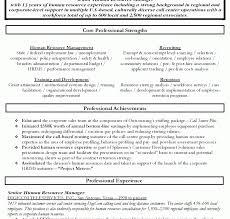 senior executive resume exles resume template marvelous sle seniorcutive account advertising